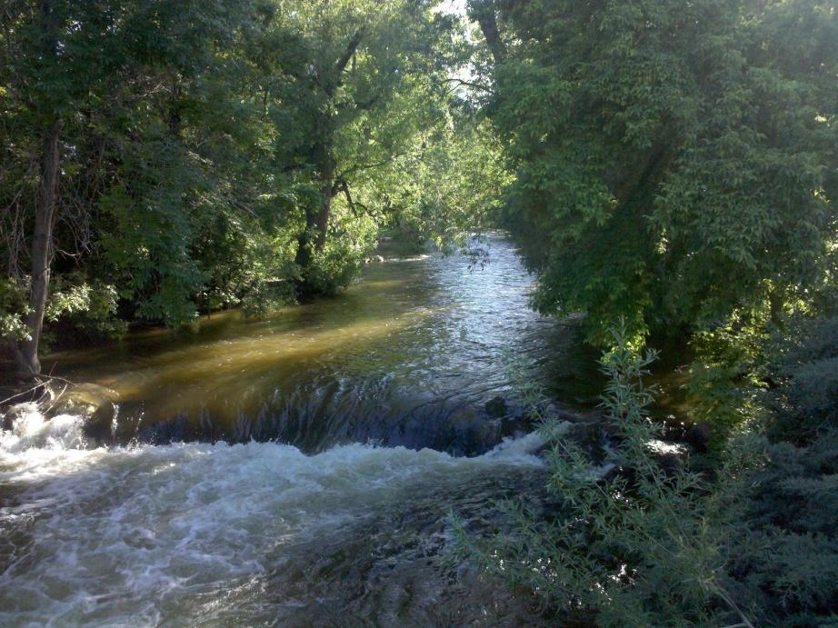 Boulder Creek, 6.17.10